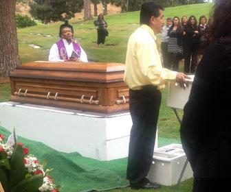 Romeros White Doves At Funerals Memorials Dove